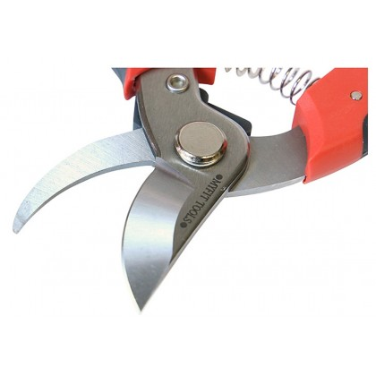 MF-100 Gold Elephant Seal My Fit Garden Stainless Scissors (GDT-C561261)